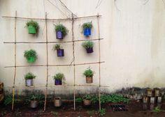 Questo sistema ci permette, in poco tempo, di creare una parete verde elegante e con materiali di scarto. Oltre alle canne di bambù, servono fascette, barattoli da conserva, grucce di metallo e piante