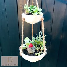 Geometric Hanging Planters Luxe District Khal Double Hanging Concrete Planters also available in sin Modern Planters, Concrete Planters, Cement, Succulent Landscaping, Planting Succulents, Garden Crafts, Garden Art, Garden Landscape Design, Hanging Planters