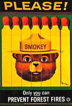 """How could anyone forget Smokey the bear and his famous statement of """"Only YOU can prevent forest fires"""".  #Smokey #SmokeyTheBear #Fires #Wildfires #Campaign #Advertising #PDA"""