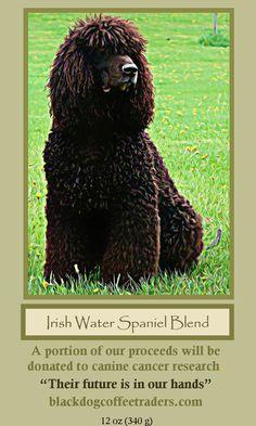 Black Dog Coffee Traders - Irish Water Spaniel Blend- 12 oz bag, $11.99 (http://stores.blackdogcoffeetraders.com/irish-water-spaniel-blend-12-oz-bag/)