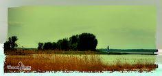Lazy Days - Lake Huron