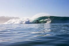 Photo of the Day: Reef McIntosh, Los Angeles. Photo: Lowe-White