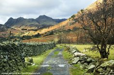 Langdale Pikes from Little Langdale, the Lake District, Cumbria