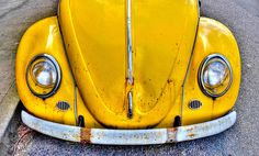 Yellow bug.....my first car was a bug....only it was white :)