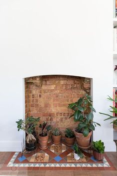 Gorgeous warm pre-loved floor tiles bring so much life to this living space, with the simple, clean fireplace opening keeping the area fresh and modern.  Displaying plants here is a truly wonderful way to use the space and add a decorative element to the room. Renovation by Absolute Project Management, photography by Helen Rayner of Moon street studio.  #fireplace #plants #moonstreetstudiophotography #absoluteprojectmanagement Brass Tap, Chimney Breast, Wood Ladder, Fire Doors, Meet Friends, Roof Light, Interior Garden, Architectural Features, Large Art