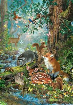 Paint by Number Kit - Forest Animals Woodland Creatures. by OurPaintAddictions Forest Animals, Woodland Animals, Forest Drawing With Animals, Forest Illustration, Book Illustration, Woodland Forest, Forest Friends, Woodland Creatures, Wildlife Art