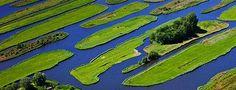 The polder landscape near Jisp, Netherlands