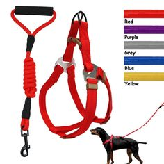 No-Pull Step-in Harness With Leash