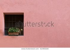 Find Blank Pink Pastel Wall Residential Building stock images in HD and millions of other royalty-free stock photos, illustrations and vectors in the Shutterstock collection. Thousands of new, high-quality pictures added every day. Blank Pink, Pastel Walls, Flower Pots, Photo Editing, Royalty Free Stock Photos, Building, Pictures, Image, Flower Vases