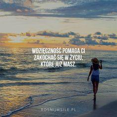 """""""Wdzięczność pomaga Ci zakochać się w życiu, które już masz"""".  #rosnijwsile #blog #rozwój #motywacja #sukces #siła #inspiracja #sentencje #myśli #marzenia #szczęście #życie #pasja #praca #cel #plaża #morze #wdzięczność #beach #sea #gratitude #aforyzmy #quotes #cytat #cytaty Simon Sinek, Powerful Words, Personal Trainer, Life Is Good, Life Quotes, Self, Motivation, Happy, Inspiration"""