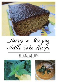 Spring foraging takes an unexpected sweet turn in this honey and stinging nettle cake, a winner for afternoon teas, spring potlucks or picnics.
