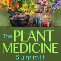 Discover The Power Of Medicinal Plants