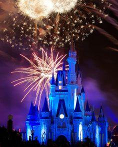 Walt Disneyworld  Orlando, FL