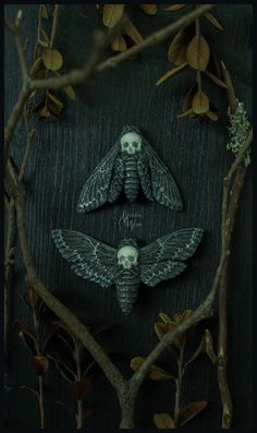 halloween jewelry Witchy Death's head Hawkmoth Acherontia Witch's jewelry brooch Gothic skull moth scull butterfly insect dark boho fantasy Gothic Aesthetic, Slytherin Aesthetic, Witch Aesthetic, Death Aesthetic, Halloween Schmuck, Halloween Jewelry, Gothic Halloween, Dark Fantasy, Fantasy Art