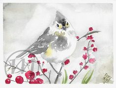 My birdie watercolor based on photo which i found here on pinterest :)