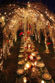 Setting the table beneath the boughs of a lighted fairy bower