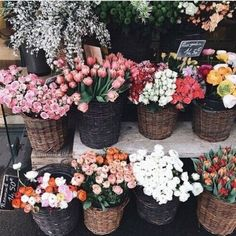 Image shared by Ivy. Find images and videos about flowers, rose and bouquet on We Heart It - the app to get lost in what you love. My Flower, Fresh Flowers, Wild Flowers, Beautiful Flowers, Spring Flowers, Purple Flowers, Pink Tulips, Cactus Flower, Flowers Nature