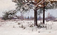Snötäckta Tallar, Snow Covered Pine Trees by Viktor Westerholm Pine Tree, Norway, Oil On Canvas, Scandinavian, Snow, Painters, Pins, Outdoor, Landscapes