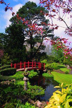 Irish National Stud & Gardens in Kildare located 15 mins from The Resort