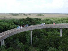 Everglades_Overlook.jpg (2048×1536)