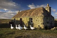 Thatched cottage in South Uist Outer, Scotland - https://twitter.com/#!/tourscotland/media/slideshow?url=pic.twitter.com%2FdAF6Y2mF