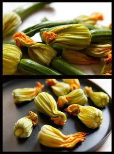 zucchini flower tempura