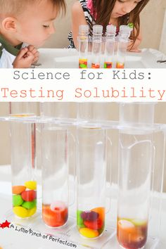 Candy Science Experiment: Testing Solubility with Skittles + Video   A Little Pinch of Perfect