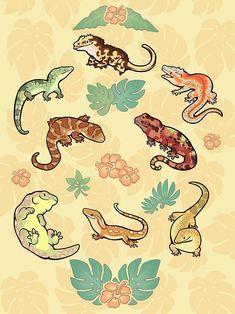 Gecko Family In Green Framed Art Print by Colordrilos - Vector Black - Cute Lizard, Cute Gecko, Animal Drawings, Cute Drawings, Cute Reptiles, Poses References, Creature Design, Cute Illustration, Cute Art