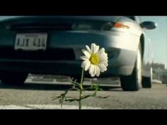 2017 Toyota Mirai TV Commercial, 'Daisy'