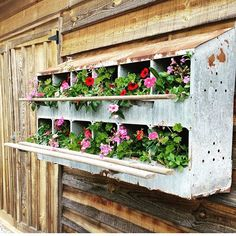 I am crushing hard on these beautiful old nesting boxes billowing with pretty…