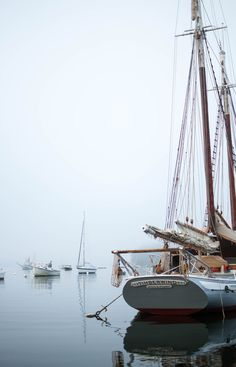The foggy harbor at Rockport, Maine.