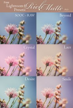Free Lightroom 4, 5, 6 & CC Presets: Rich Matte Vol. 1