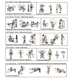 Plan de ejercicios para aumentar masa muscular mujeres