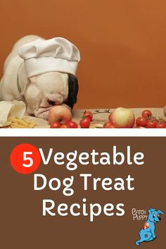Want to give your dog a healthy dog treat with vegetables? These homemade vegetable dog treat recipes are sure to be a hit, including this dehydrated sweet potato dog treat recipe. Diy Dog Treats, Homemade Dog Treats, Dog Treat Recipes, Healthy Dog Treats, Dog Food Recipes, Sweet Potato Dog Treats, Recipe Patch, Different Fruits And Vegetables, Dog Snacks