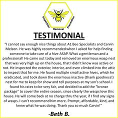 This is another great testimonial from one of A1 Bee Specialists satisfied customers!!!  We are so glad that we could help, Beth!  Call A1 Bee Specialists in Bloomfield Hills, MI today at (248) 467-4849 to schedule an appointment if you've got a stinging insect problem around your house or place of business! You can also visit www.a1beespecialists.com!