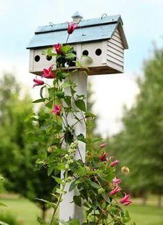 Birdhouse with Clematis. I have the clematis all i need is a birdhouse. Dream Garden, Garden Art, Garden Design, Beautiful Birds, Beautiful Gardens, Garden Cottage, Flower Boxes, Garden Inspiration, Bird Houses
