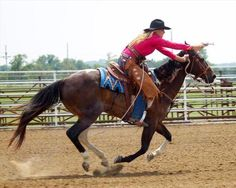 Equine.com's featured Horse of the Day ~ Sissy Missy