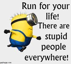Funny Minion Quotes... - minion quotes, Quotes - Minion-Quotes.com