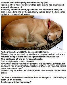I love this story!    I have read it so many times and it always warms my heart.