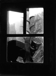 Willy Ronis (1910 – 2009) was a French photographer, who crafted powerful black-and-white images in which he captured the rich texture of everyday working-class life in post-World War II Paris.