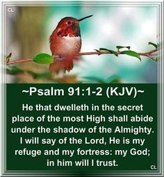 """♥♥⭐  ⭐  ⭐  ⭐  ⭐  ⭐  ⭐  ⭐ ♥♥ PSALM 91:1-2 1. You can go to God Most High to hide.     You can go to God All-Powerful for protection. 2. I say to the Lord, """"You are my place of safety, my fortress.     My God, I trust in you."""" ♥♥⭐  ⭐  ⭐  ⭐  ⭐  ⭐  ⭐  ⭐ ♥♥"""