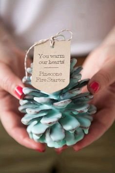 how to make your own Pinecone Fire Starters! Learn how to make your own Pinecone Fire Starters! Great Christmas party favor or gift idea.Learn how to make your own Pinecone Fire Starters! Great Christmas party favor or gift idea. Christmas Party Favors, Diy Holiday Gifts, Holiday Crafts, Christmas Decorations, Camping Decorations, Christmas Trees, Pinecone Wedding Decorations, Pinecone Christmas Crafts, Homemade Gifts For Christmas