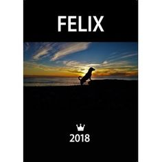 Kalender med Felix 2018