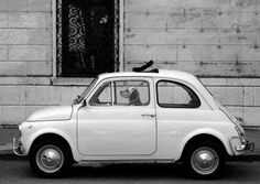 Fiat 500, Italy.