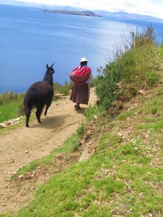Isla Del Sol , Bolivia (wow, I took a picture almost exactly like this in Moray, Peru)
