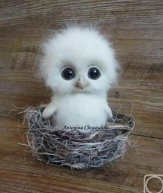 Cute Animals Hd only Domestic Animals Cute Pictures + Cute Baby Animals Live Wallpaper Needle Felted Animals, Felt Animals, Needle Felting, Animals And Pets, Felt Owls, So Cute Baby, Cute Babies, Too Cute, Baby Animals Pictures