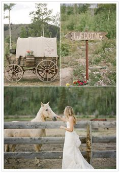 A horse at the wedding, I love it!