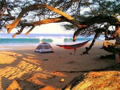 Beach campsite perfection. Pretty sure I need a hammock for the next trip.