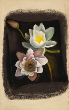 Georgia Okeefe - water lily