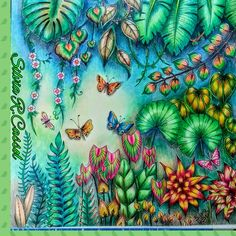Selva Mágica -By Silvia Regina Cassol